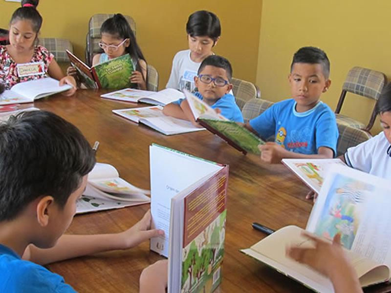 EDUCAMAZONÍA – Bienvenidos a nuestro sitio web